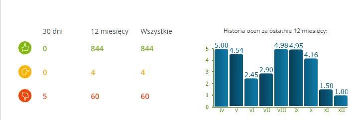 Obraz przedstawia statystyki opinii sklepu internetowego