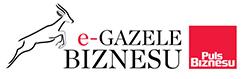 e-Gazela Biznesu
