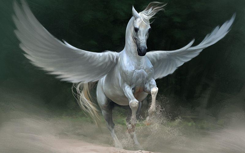 CBA kupiło oprogramowanie za 33 mln zł – czy to Pegasus?