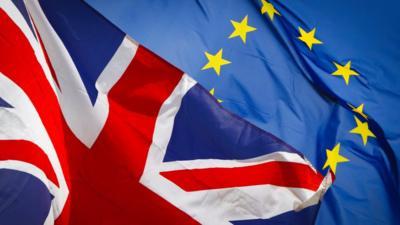 Rejestracja Europejczyków w UK po Brexicie poprzez wadliwy systemem komputerowy